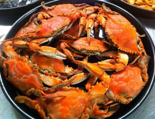 Maryland Launches New Tourism Initiative Highlighting Crabs, Oysters